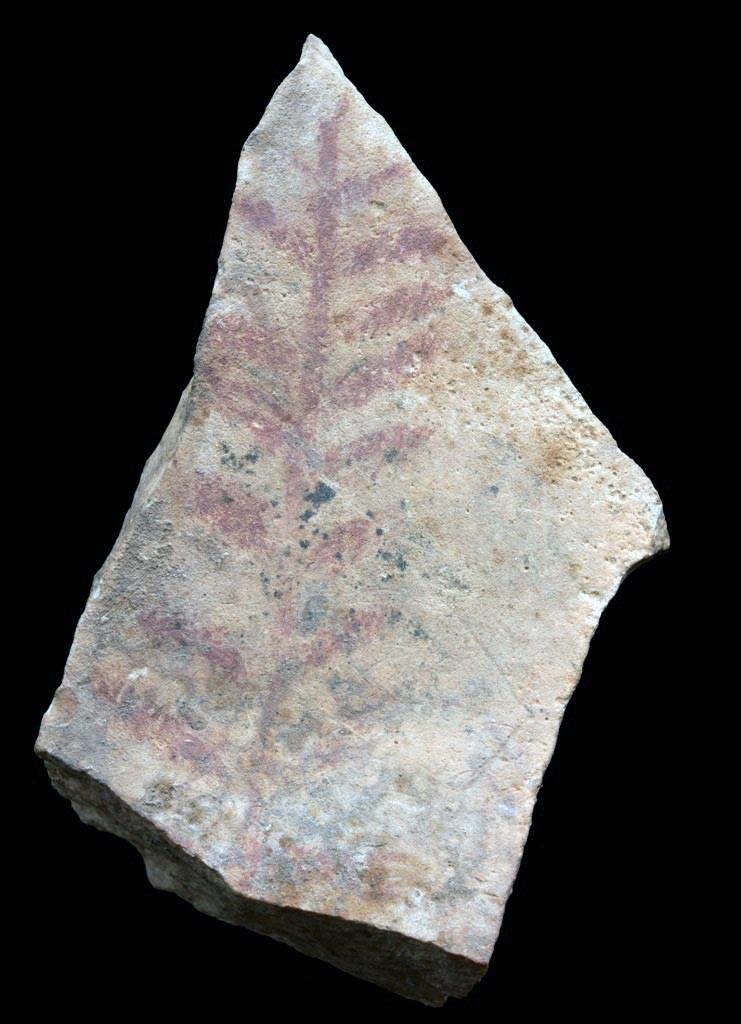 parpallo-cueva-1
